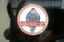 Cobra Icon